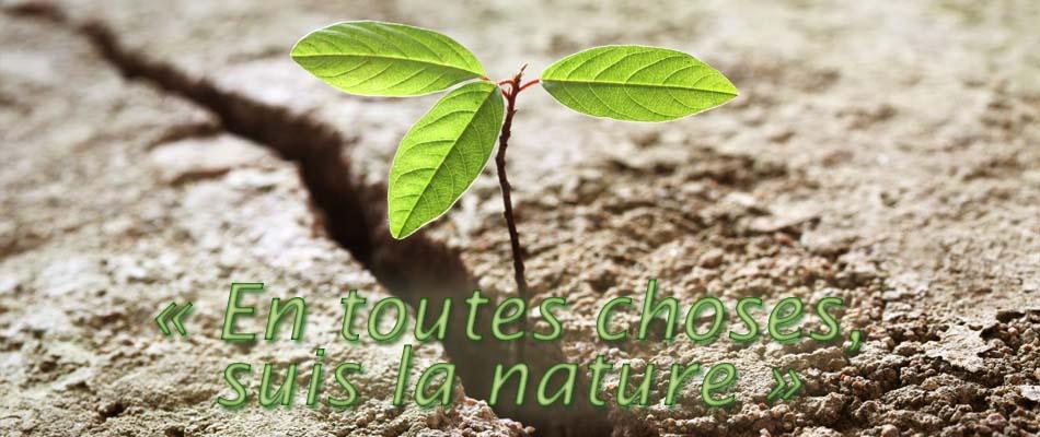 Suis la nature